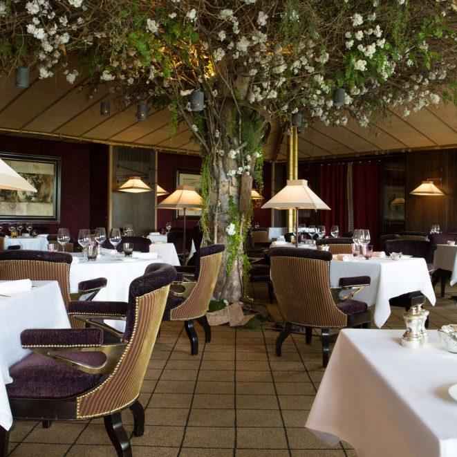 La-Reserve-Geneve-Le-Loti-Restaurant-2